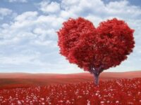 100 amazing short Love Words for you