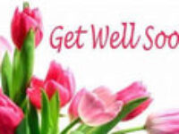 7 Best Get well soon Messages and Quotes